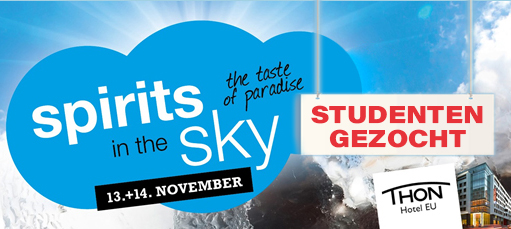 Studentenjob op event: Festival Spirits In The Sky